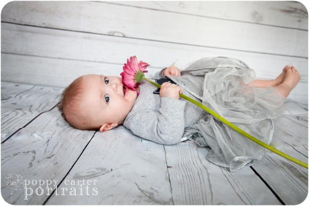 IslaBear4Months-poppyportraits